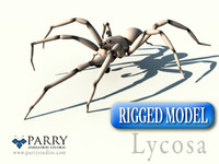 Rigged Spider