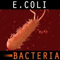 3ds max organic e coli