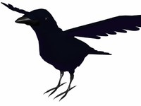Low-poly Crow