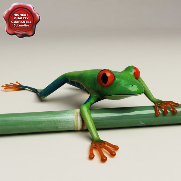 Red_eyed_tree_frog_Pose_2_00.jpg