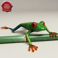 Red eyed tree frog Pose 2
