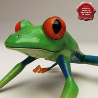 Red eyed tree frog Pose 3