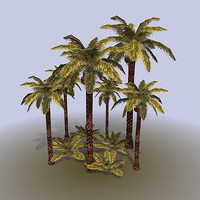 palm tree bush 3d model
