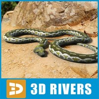 Green Python by 3DRivers
