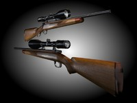 Modern Hunting Rifle
