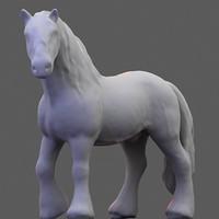 3D Stallion