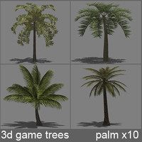 trees 3d palm x10