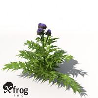 xfrogplants artichoke plant 3d max