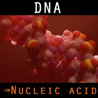 organically dna 3d model