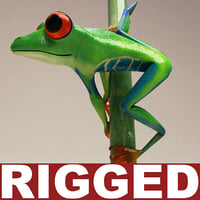Red eyed tree frog Rigged