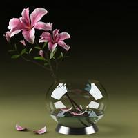 realistic magnolia 3d model