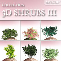 shrub collection 03