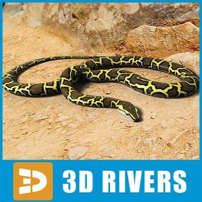 Python_02_logo.jpg