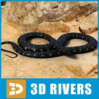 Black python by 3DRivers