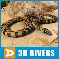 Orange spotted python by 3DRivers