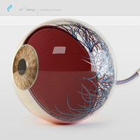 eye stylized layer 3d model