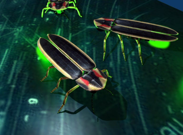 firefly rigged 3d 3ds