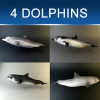 Dolphin pack X 4