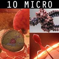 10 micro scenes 3d model