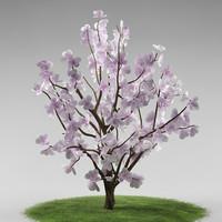 3d tree flowers model