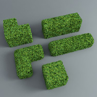 Hedge cubes
