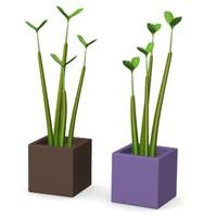 3d seed pot
