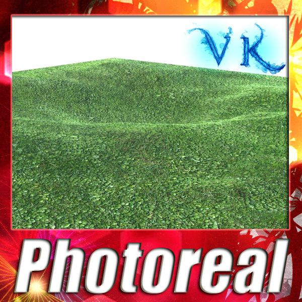 resolution grass 3d model