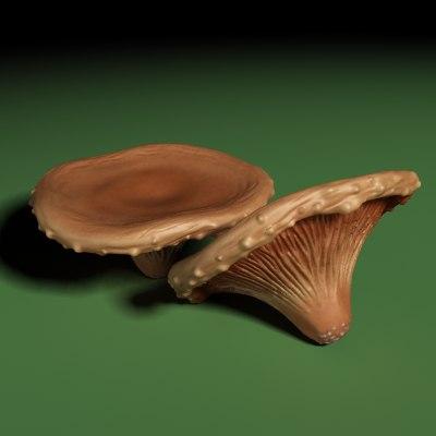 mushroom_01_001.bmp