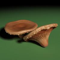 mushroom 3d max
