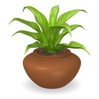 lwo plant