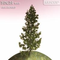 tree 025 spruce