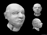 bust bald man 3d model