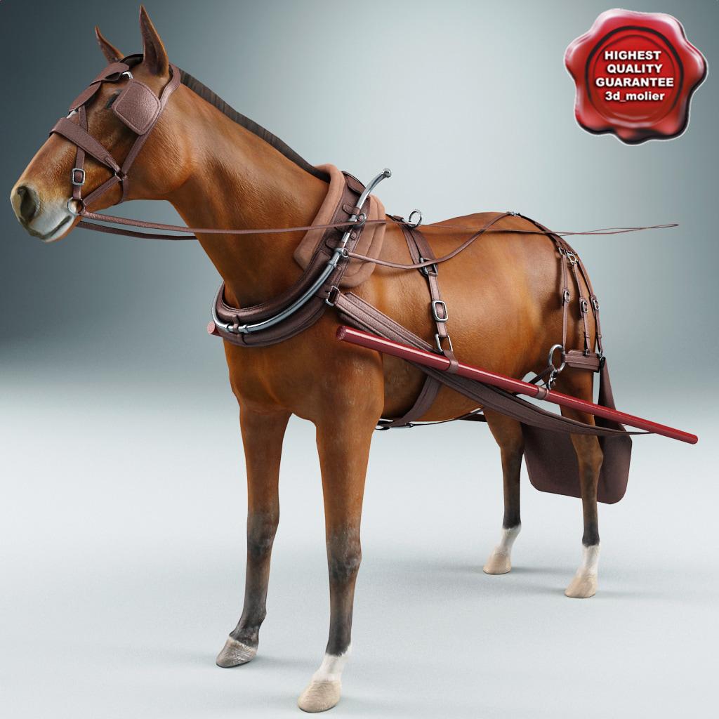Harness_Horse_00.jpg