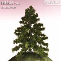 tree 026 spruce