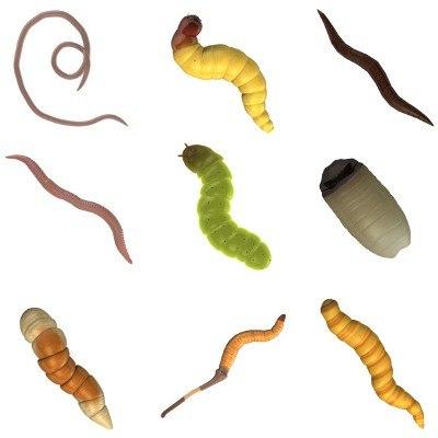 0worms.jpg