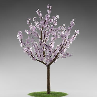 tree_flowers_02