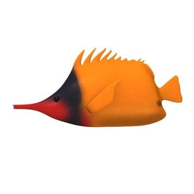 tfish4.jpg