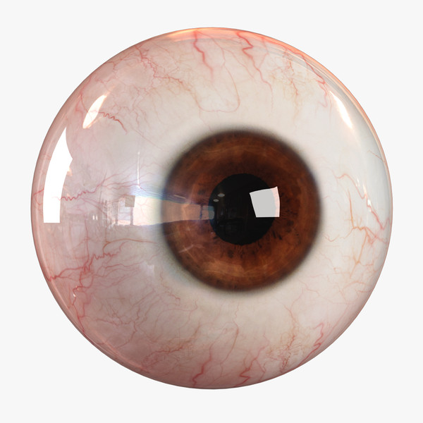 realistic human eye - 3d obj