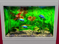 wall mounted aquarium 3d model