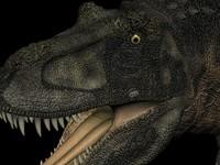 t-rex rex 3d model