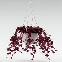 hang plant 3d model