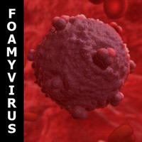 SSS Human Foamy Virus