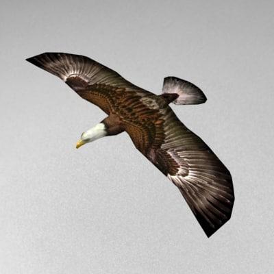 Eagle_v1.jpg
