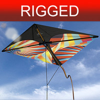 kite Nº3 rigged