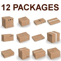 pack package 3d model
