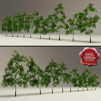 Low-Poly Birch Trees Collection V2