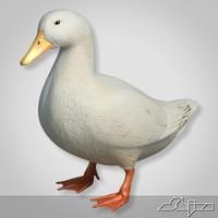 Duck 2 White