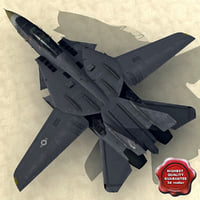 F-14 Tomcat Low-Poly