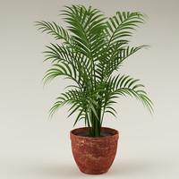 plant flowerpot 3d max