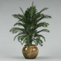 plant_39